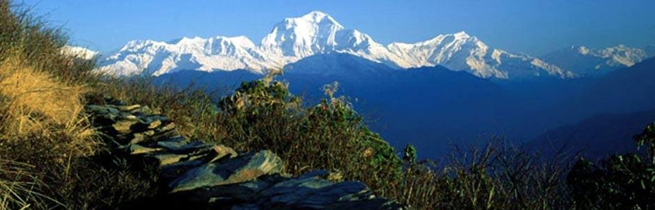 Tour and trek in Nepal (Kathmandu, Chitwan Pokhara and Poonhill trek 14 Days)